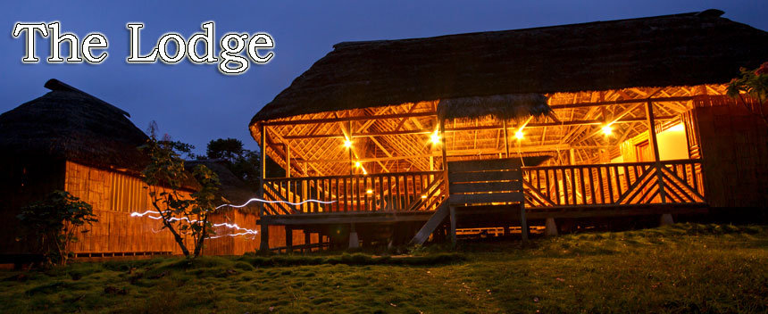 Amazon Dolphin Lodge - Panacocha Protected Forest - Ecuador